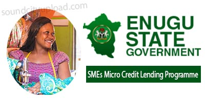 Enugu State Government   SMEs Micro Credit Lending Programme - Apply Now