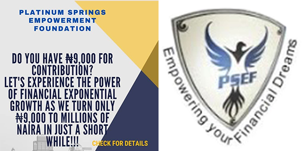 Platinum Springs Empowerment Foundation Financial Freedom For Nigerians