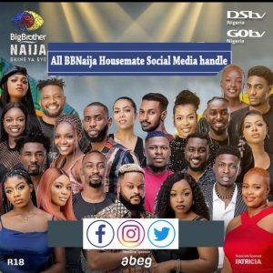 All BBNaija Housemate Social Media handle